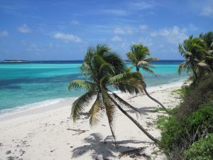 Croisière en catamaran dans les iles grenadines